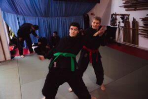 Nindza treninzi – sve borilacke vestine u jednoj – Novi Sad, Satori dodjo